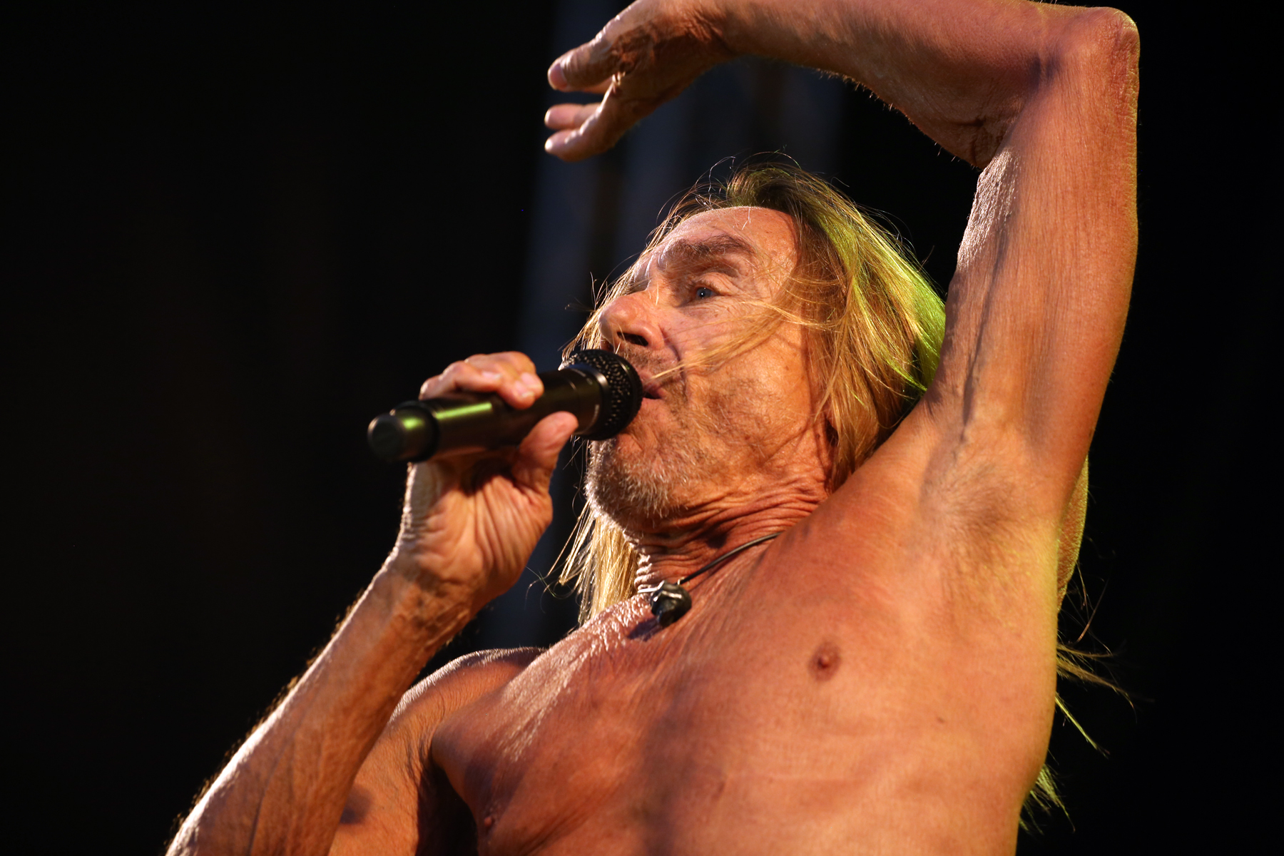 Iggy Pop live at Haven Festival Copenhagen